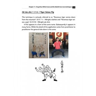 white crane kungfu book  6 308x308